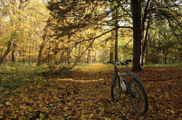 TC 5: Bike Rides