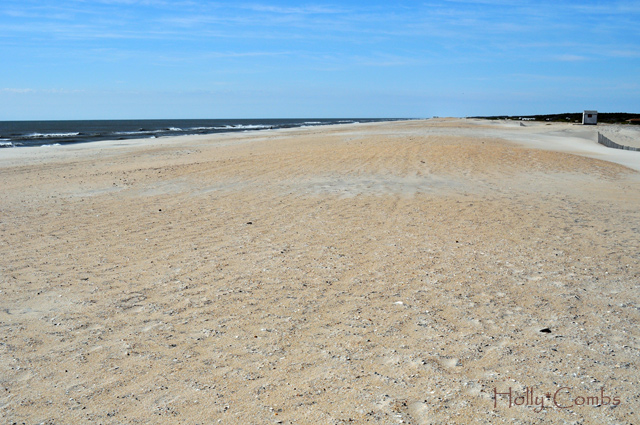 The beach at Assateague Island National Seashore.