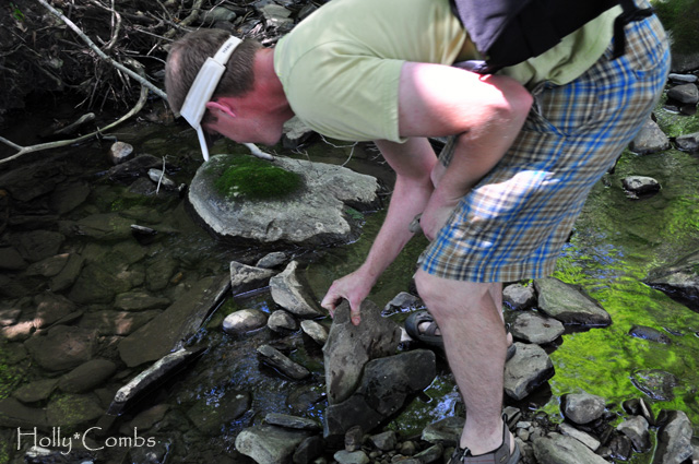 Looking for crayfish.