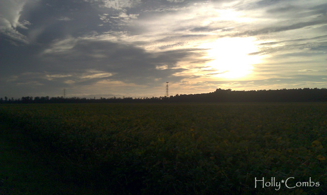 A country sunset bike ride.