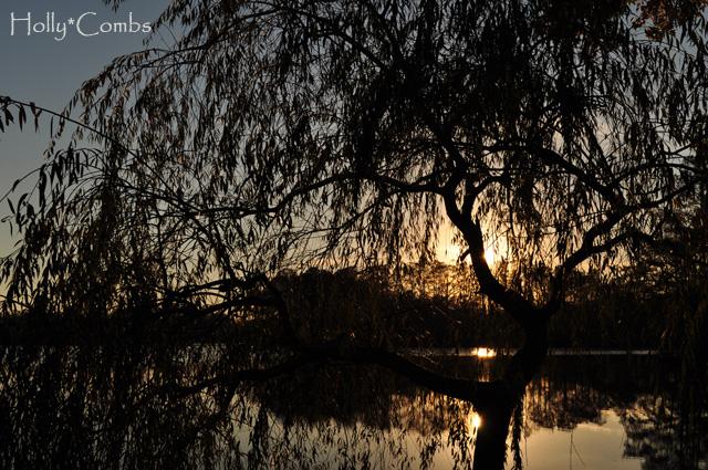 Sunset at Northwest River Park