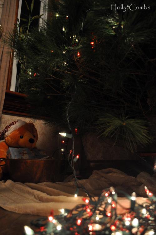 Lighting up the Christmas tree