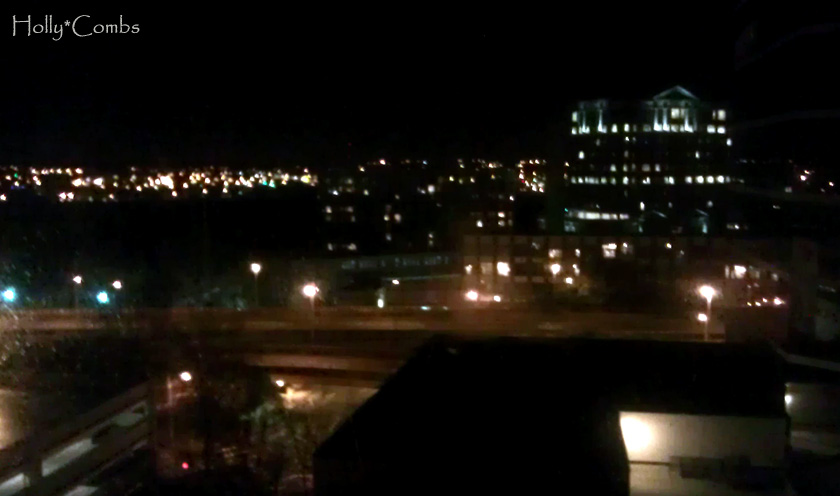 Our view from the Omni Hotel in Richmond.