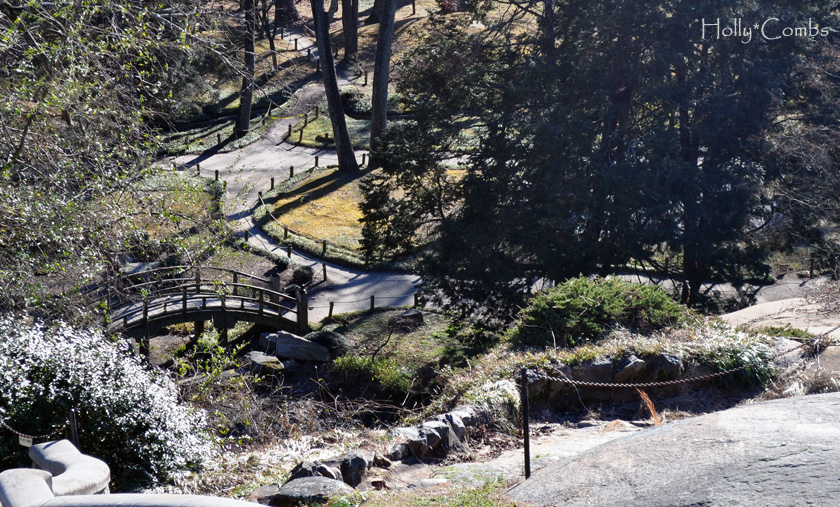 View of the Japanese garden.