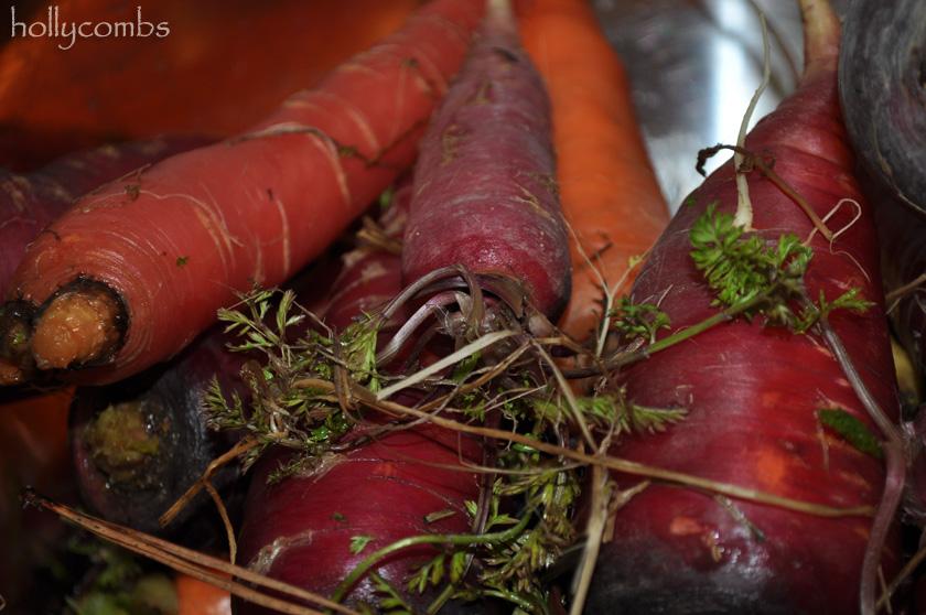 Tricolor carrots.