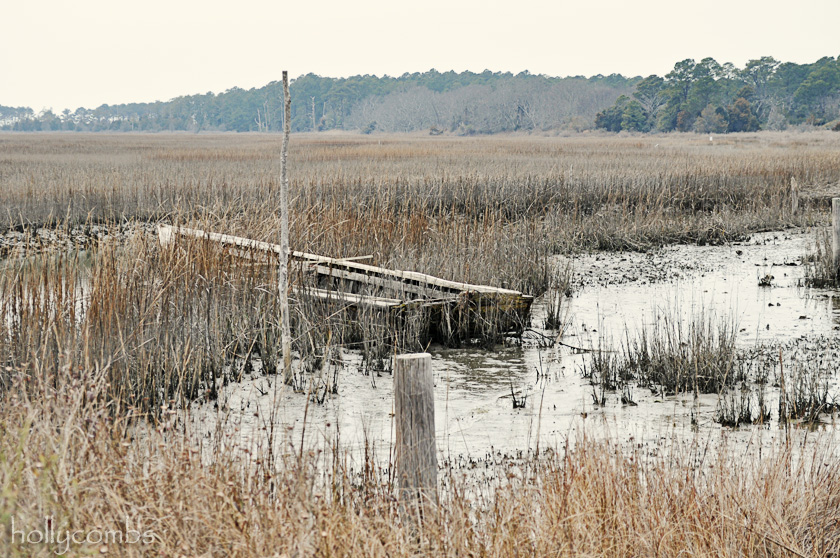 Eastern shore shipwreck