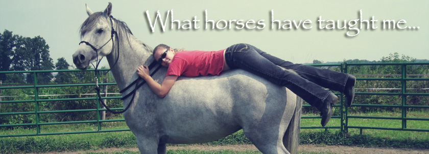 What horses have taught me