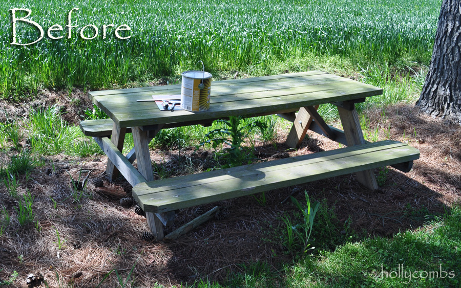 Picnic table before