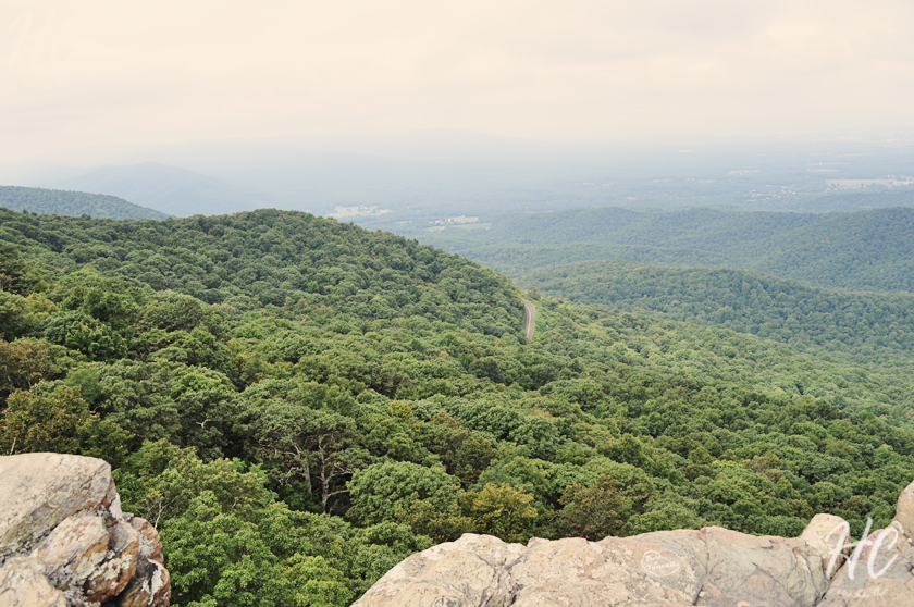 The view from Humpback Rocks Trail