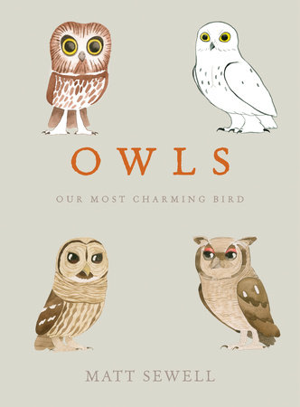 Book Review: Owls